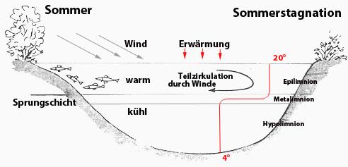 Klicke auf die Grafik für eine größere Ansicht  Name:sommerstagnation.jpg Hits:21390 Größe:31,4 KB ID:779
