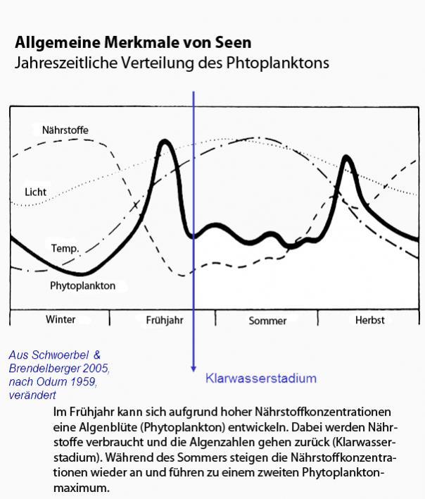 Klicke auf die Grafik für eine größere Ansicht  Name:verteilung-phytoplankton.jpg Hits:17810 Größe:59,8 KB ID:791